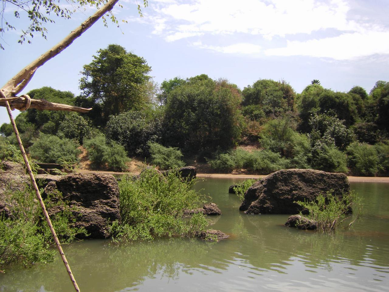 Visite du parc de niokolo koba au s n gal for Hotel autour de moi