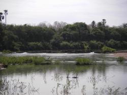 le-fleuve-gambie3.jpg