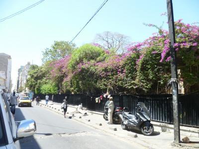 scenes-de-rue13.jpg
