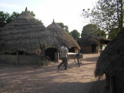 village5.jpg